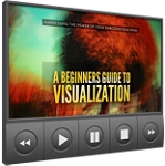 A Beginners Guide To Visualization (PLR / MRR)