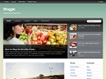 Bloggie Theme (PLR/MRR)