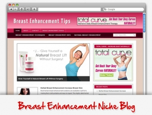 Breast Enhancement Niche Blog (PLR)