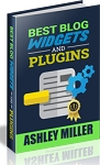 Best Blog Widgets And Plugins (PLR / MRR)