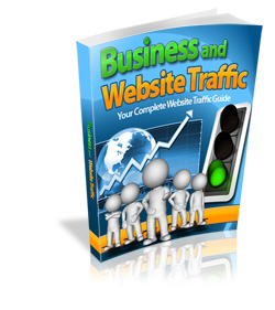 Business And Website Traffic (RR)