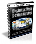 Business Web Design Basics Newsletter (PLR)