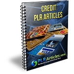 10 Credit Articles (PLR / MRR)