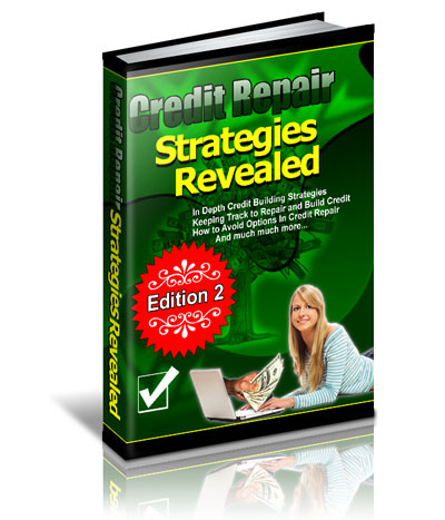 Credit Repair Strategies Revealed (PLR / MRR)