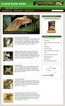 Crested Geckos Blog