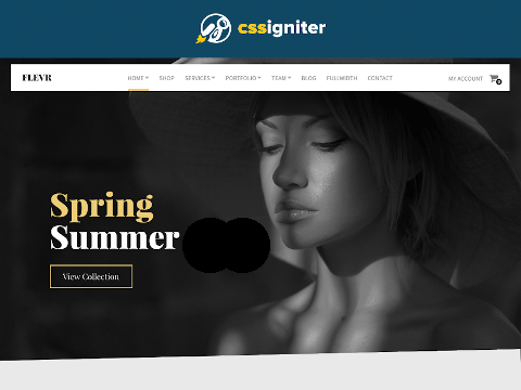 CSSIgniter Flevr Wordpress Theme (PLR / MRR)