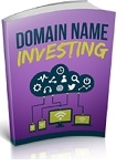 Domain Name Investing (PLR / MRR)