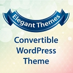 Convertable Wordpress Theme(PLR/RR)