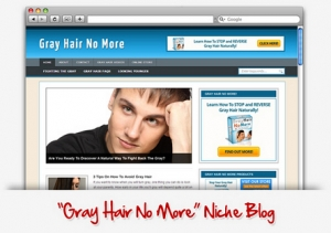 Gray Hair No More Niche Blog (PLR)