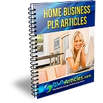 25 Home Business PLR Articles (PLR / MRR)