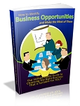 Identify Business Opportunities (PLR / MRR)