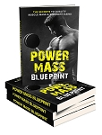 Power Mass Blueprint (PLR / MRR)