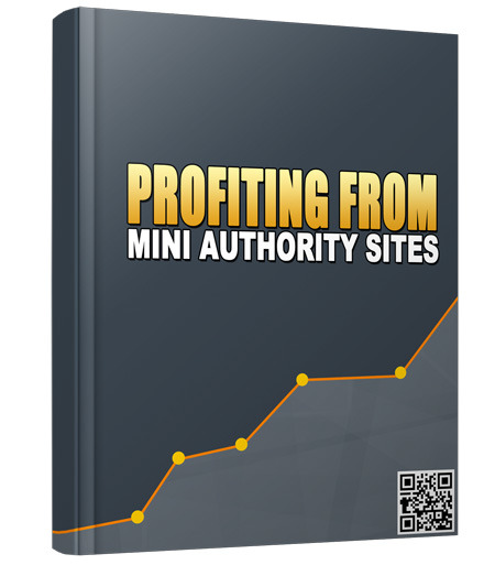 Profiting From Mini Authority Sites (PLR / MRR)