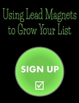 Using Lead Magnets to Grow Your List (PLR / MRR)