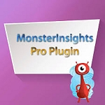 Monster Insights Pro Wordpress Theme (PLR / MRR)