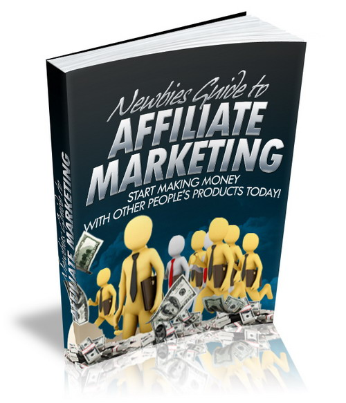 Newbies Guide to Affiliate Marketing (MRR)