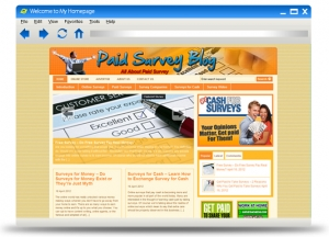 Paid Survey Blog Theme (PLR)