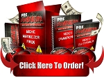 PDF Domination - Video Series (PLR / MRR)