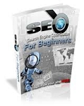 SEO for Beginners (MRR)