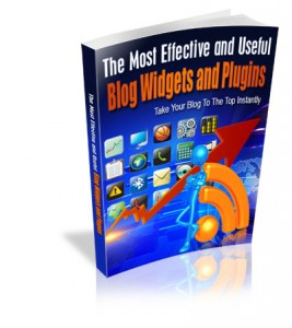 The Most Effective And Useful Blog Widgets And Plugins (PLR / MRR)