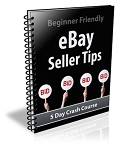 Ebay Seller Tips PLR Newsletter (PLR / MRR)