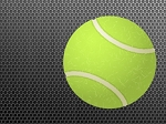 Tennis Mastery Rebrandable Software (PLR / MRR)