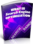 What Is Search Engine Optimization (PLR / MRR)uct - Please enter name here