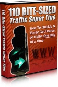 110 Bite Sized Traffic Super Tips (MRR)
