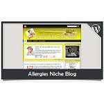Allergies Niche Blog Wordpress Theme (PUO)