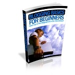 Blogging Basics for Beginners (PLR)