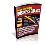 Business Grants (PLR / MRR)