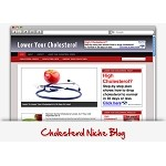 Cholesterol Niche Wordpress Theme PLR (MRR)