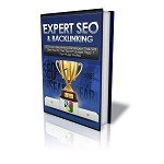 Expert SEO and Back Linking (PLR)