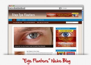 Eye Floaters Niche Blog (PLR)