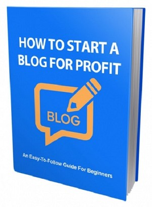 How To Start a Blog For Profit (PLR / MRR)