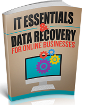 IT Essentials And Data Recovery (PLR / MRR)
