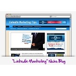 LinkedIn Marketing Niche Blog Theme PLR (MRR)