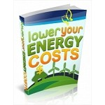 Lower Your Energy Costs (PLR)