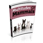 Multitudes Of Mammals (PLR / MRR)