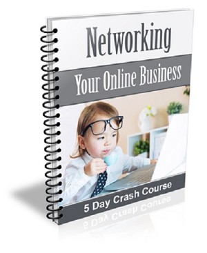 Networking Your Online Business (PLR / MRR)