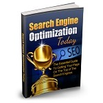 Search Engine Optimization Today (PLR / MRR)